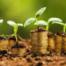 Taller abundancia y prosperidad